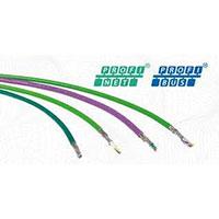 Certificação de Rede